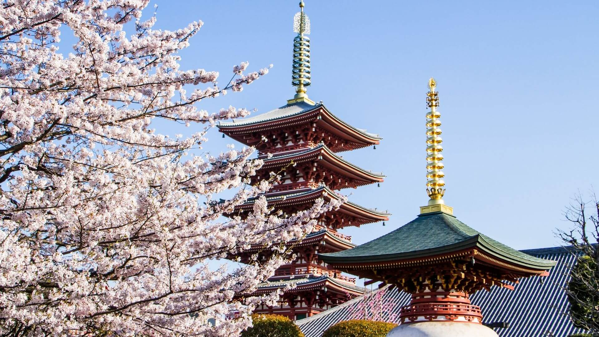 What is Japan's Qualified Invoice System